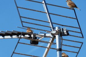price of TV Aerial Fitters Eastwood